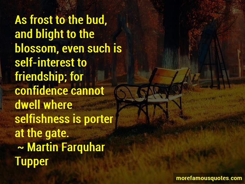 Friendship Blossom Quotes