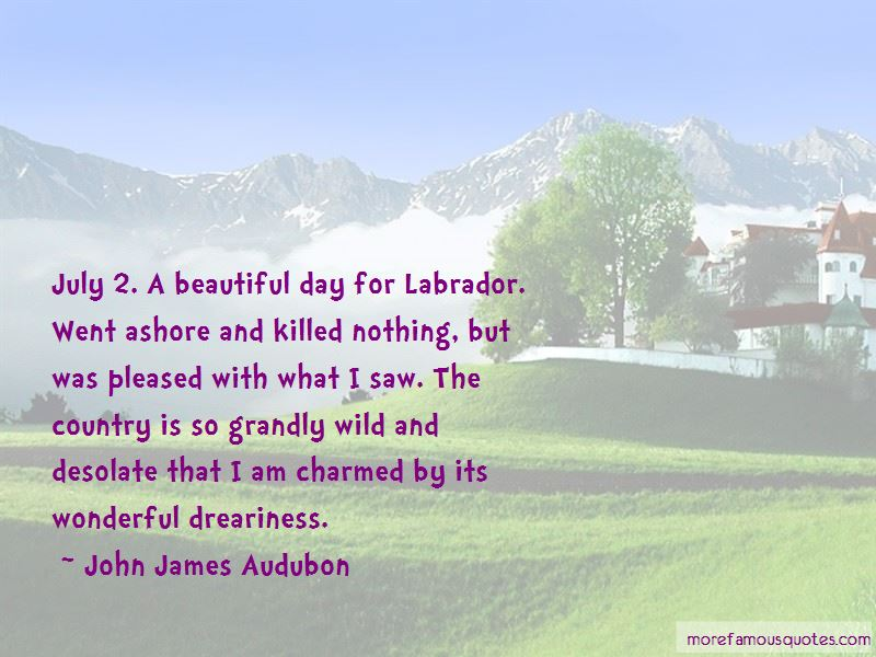 Quotes About A Beautiful Day Top 52 A Beautiful Day Quotes From