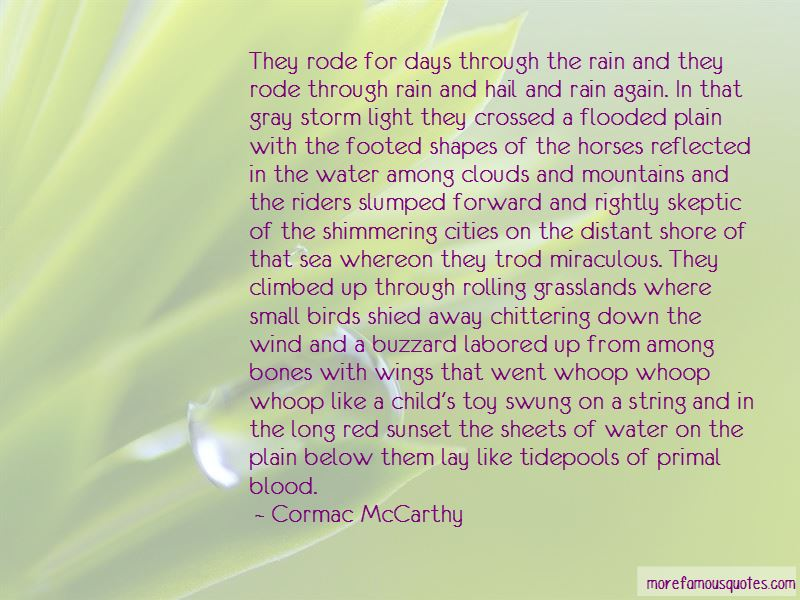 The Storm Riders Quotes