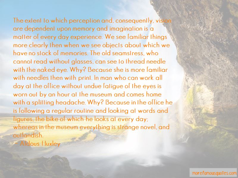 Vision And Perception Quotes Pictures 2