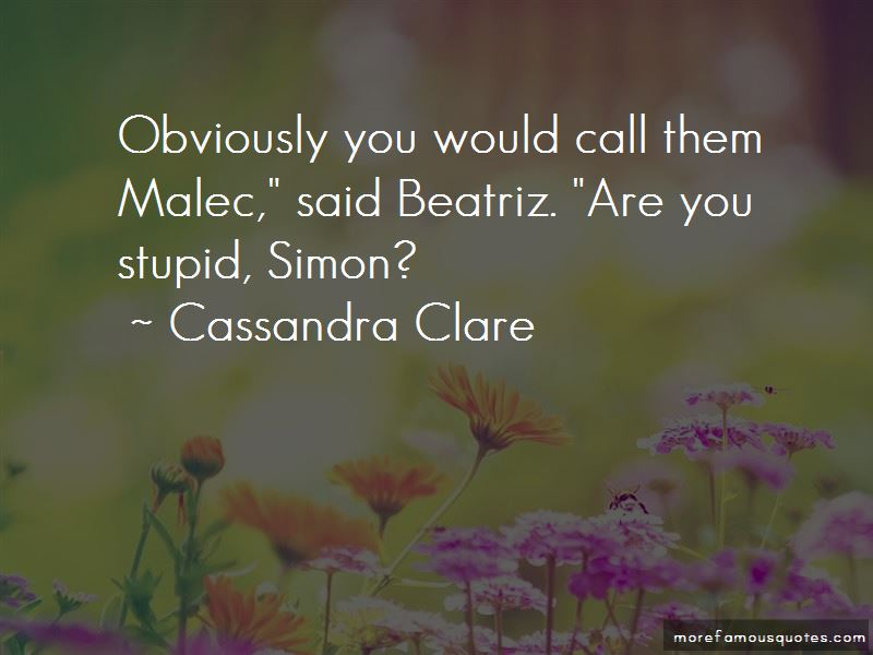 Quotes About Malec