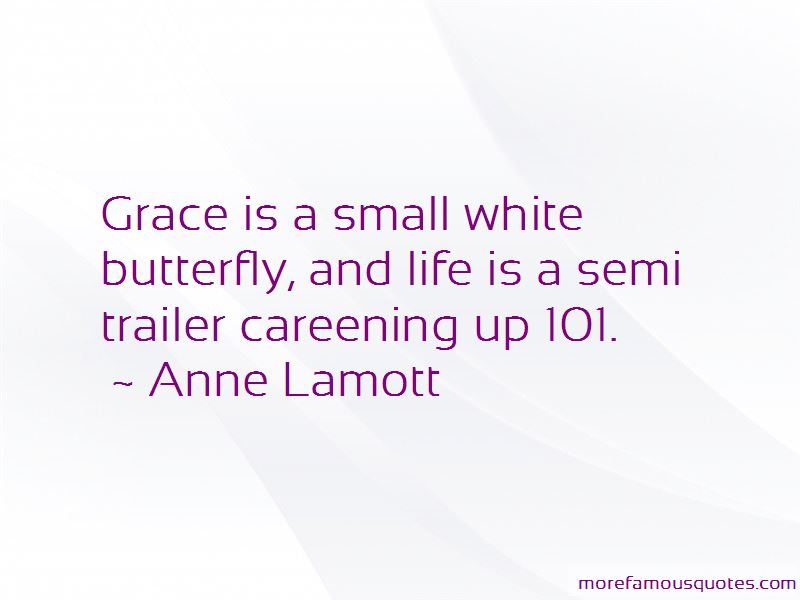 Quotes About Butterfly And Life