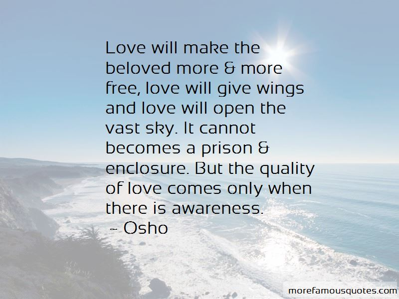 Quotes About Wings And Love