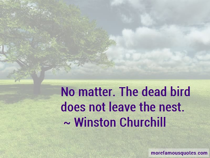 Leave The Nest Quotes Pictures 2