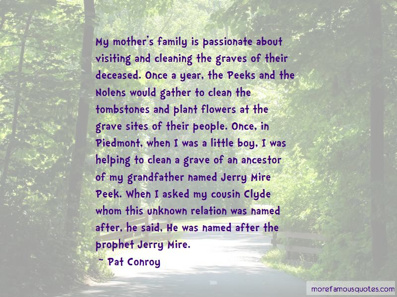 Visiting Grave Quotes Pictures 4