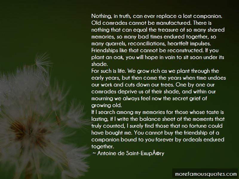 Forever Lasting Friendship Quotes. U201c