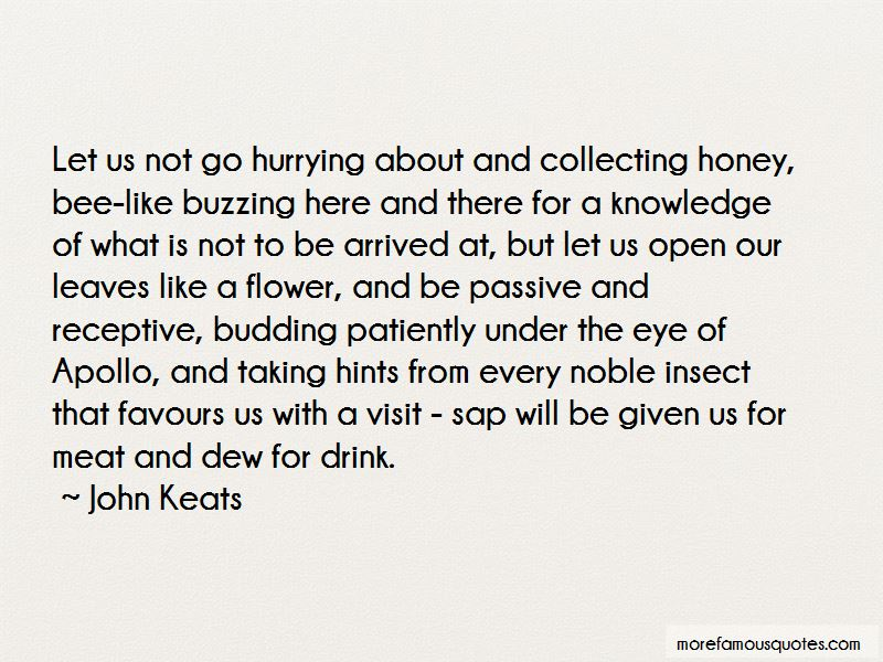 Honey Bee Quotes Pictures 4