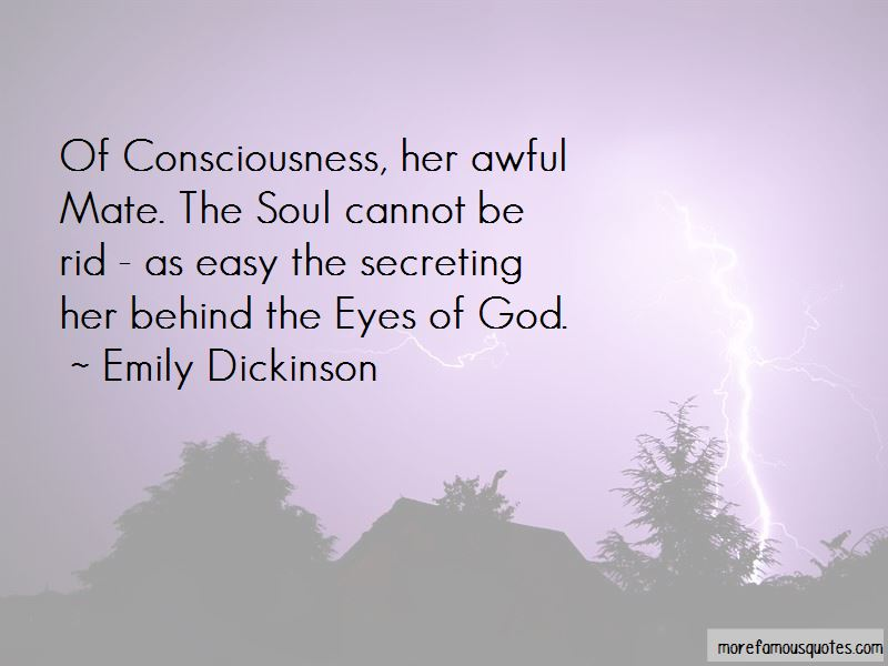 Quotes About Behind The Eyes