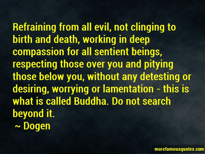 Buddha Quotes On Death Daily Inspiration Quotes