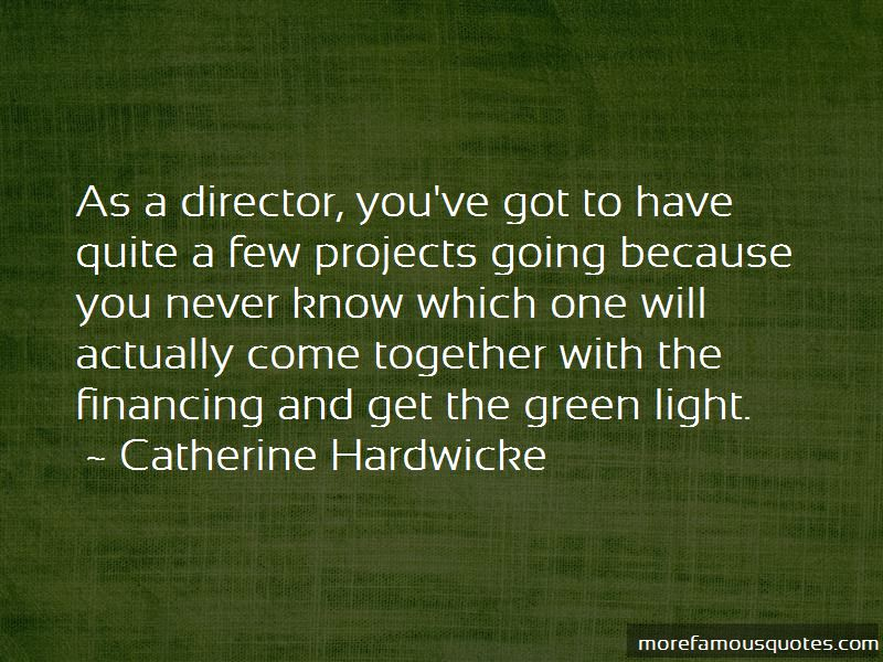 Green Light Quotes Pictures 3