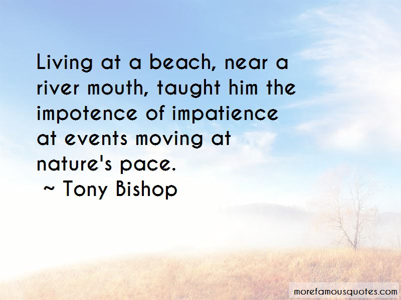 Quotes About Living Near The Beach