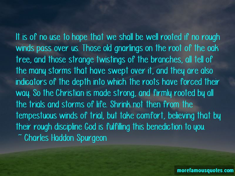 Quotes About Storms And Life