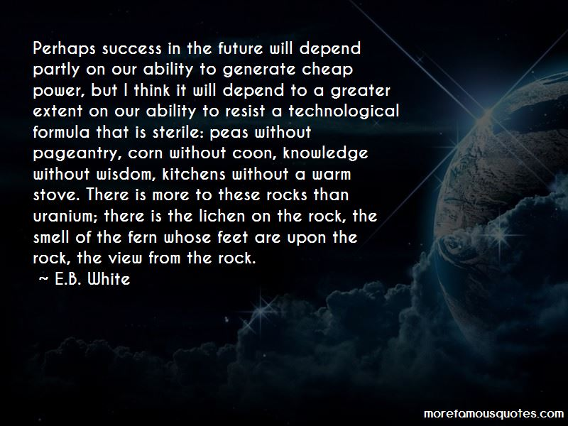 Quotes About The Future And Success: Quotes About Success In The Future: Top 53 Success In The