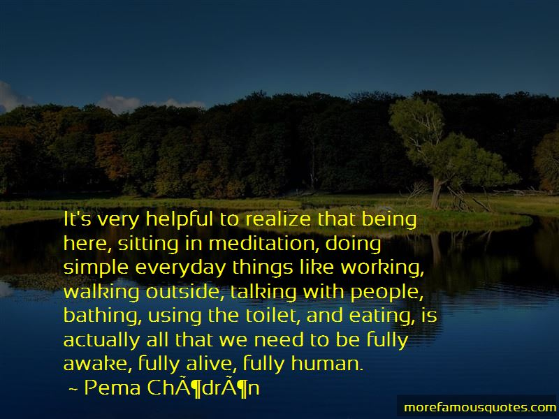 Quotes About Using The Toilet