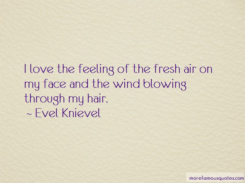 Quotes About Wind Blowing Hair