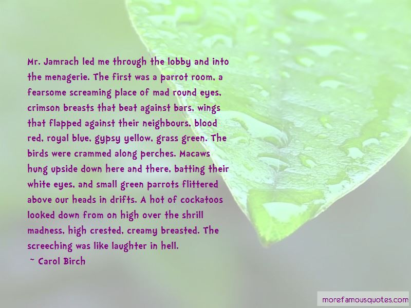 Green Blue Eyes Quotes Pictures 3