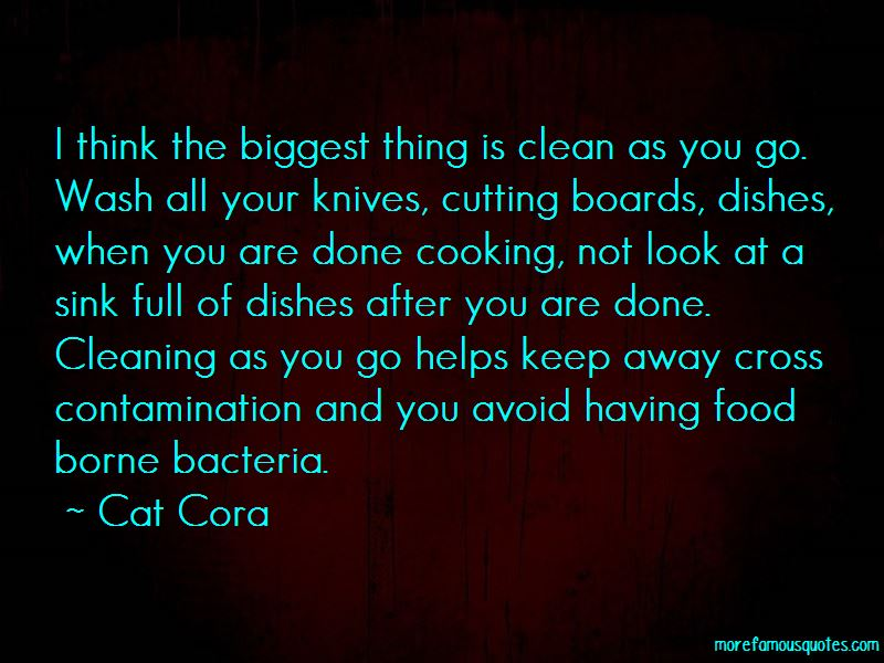 Cleaning Dishes Quotes Pictures 3