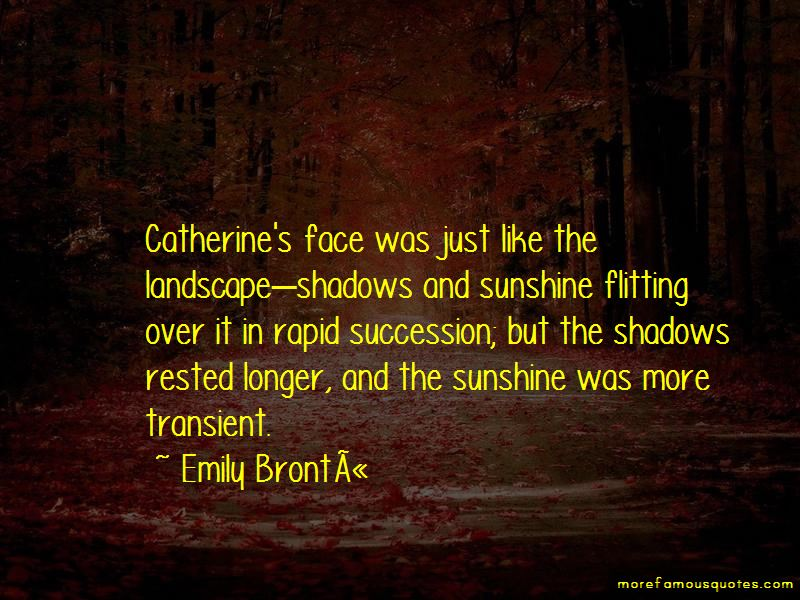 Quotes About Shadows And Sunshine