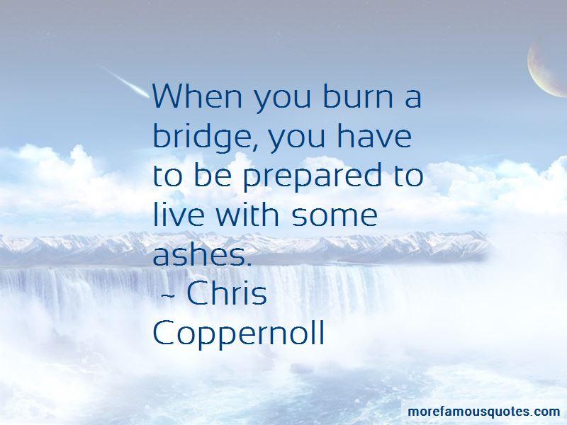 Burn A Bridge Quotes Pictures 3