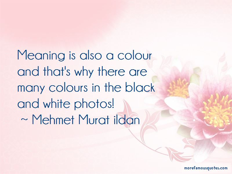 Quotes About Black And White Photos