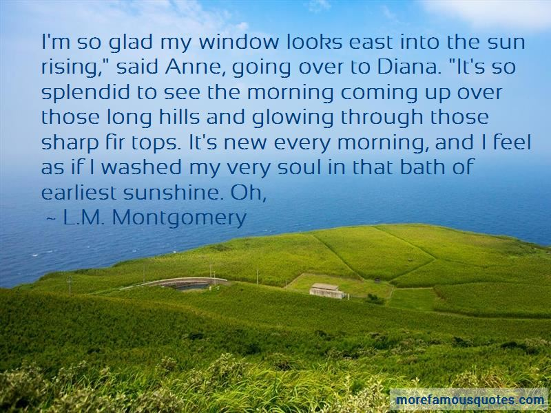 Sunshine Through A Window Quotes Pictures 3