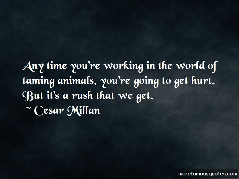 Quotes About Taming Animals