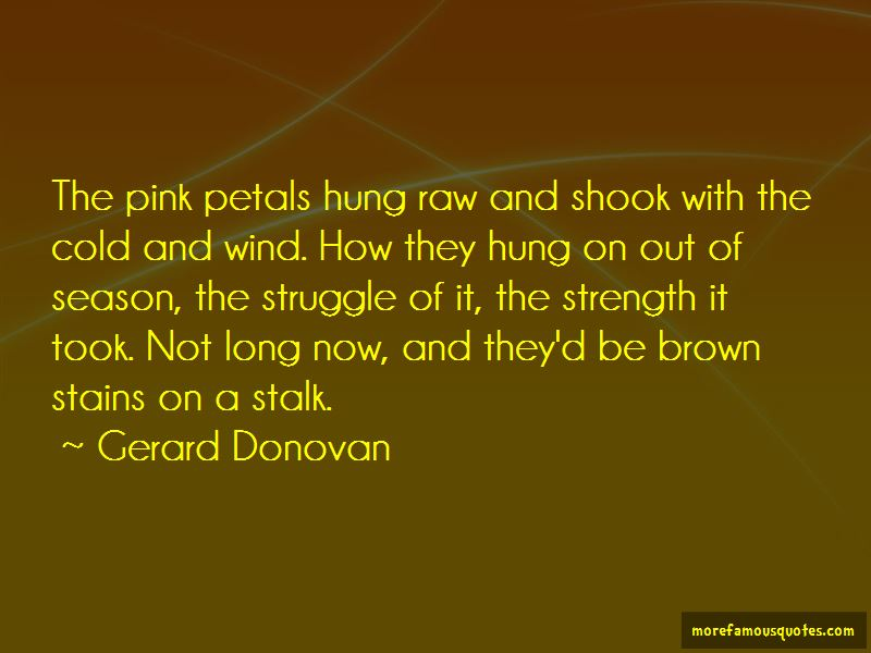 Quotes About Cold And Wind