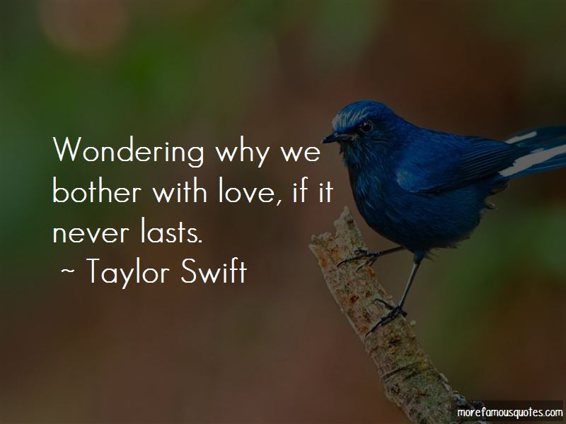 Wondering Why Quotes