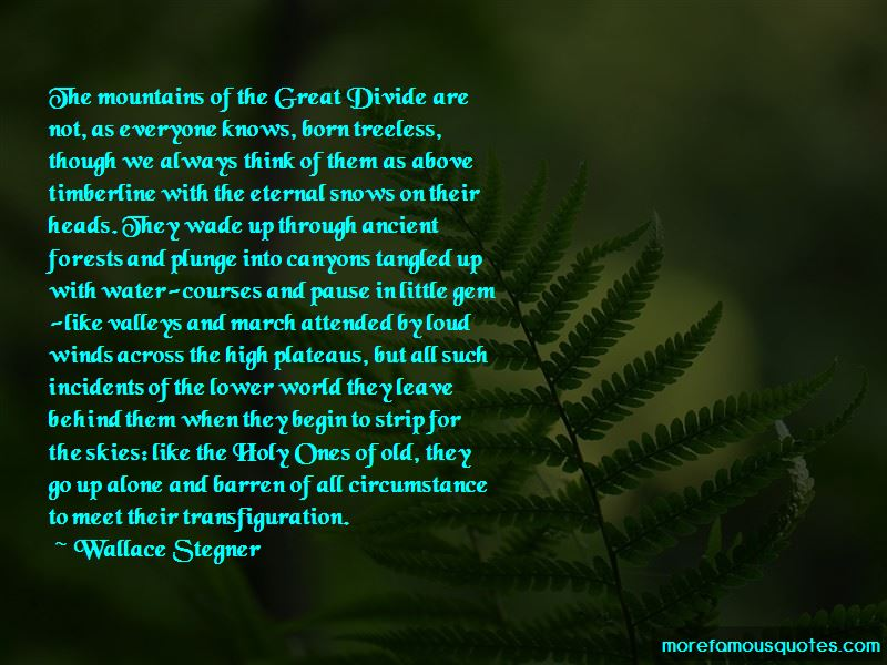 Forests Quotes Pictures 4