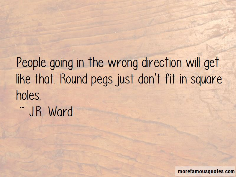 Square Pegs In Round Holes Quotes Pictures 2
