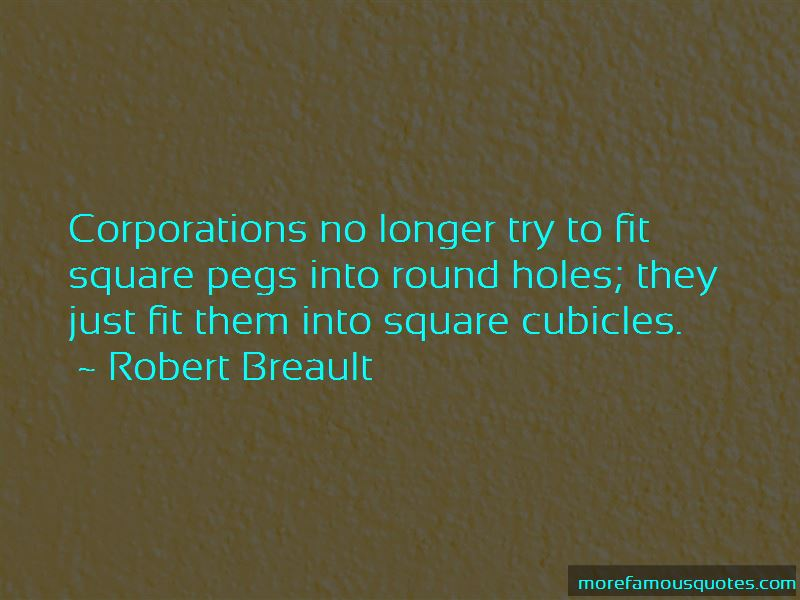 Square Pegs In Round Holes Quotes Pictures 3