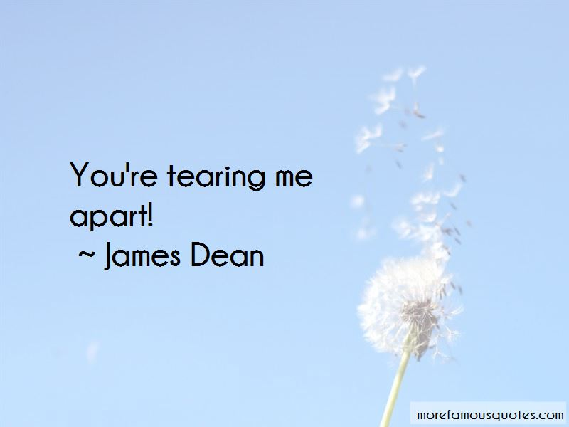 You're Tearing Me Apart Quotes