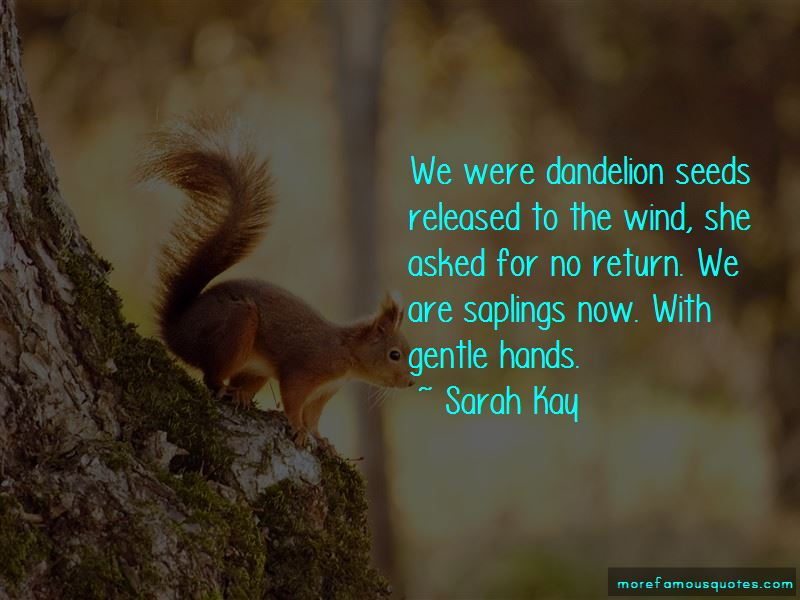 Quotes About Dandelion Seeds