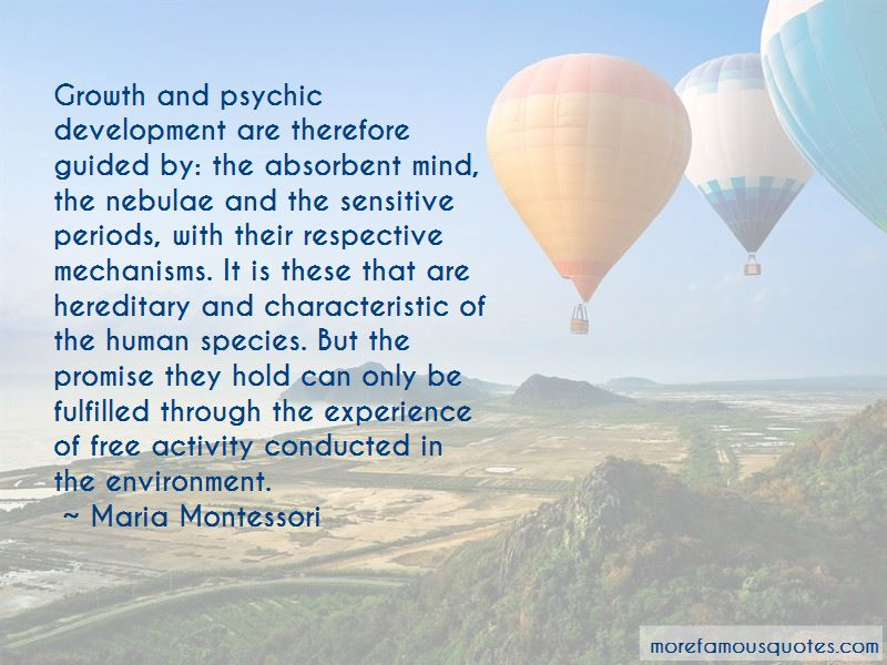 Quotes About The Absorbent Mind