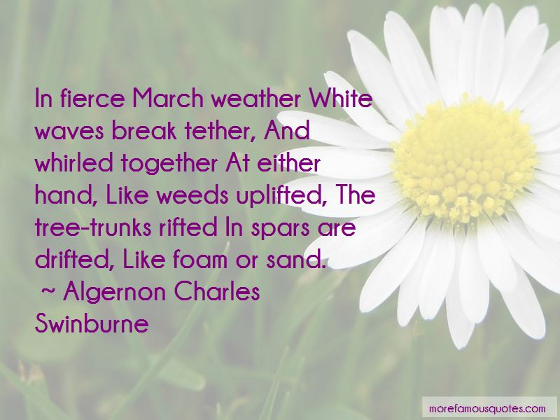 Sand And Foam Quotes Pictures 2