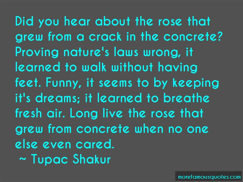 The Rose That Grew From The Concrete Quotes Pictures 3