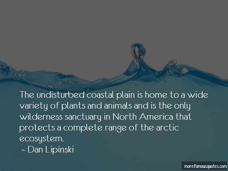 Quotes About Arctic Animals