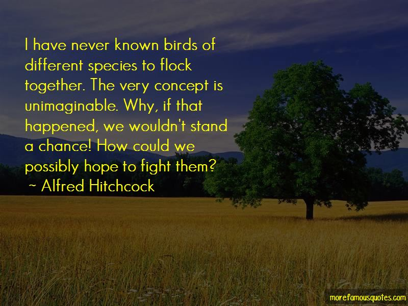 Quotes About Birds And Hope