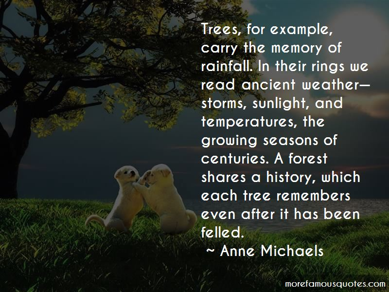 Growing A Tree Quotes Pictures 2
