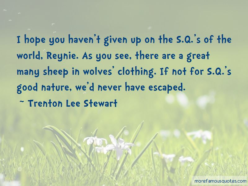 Sheep In Wolves Clothing Quotes Pictures 3