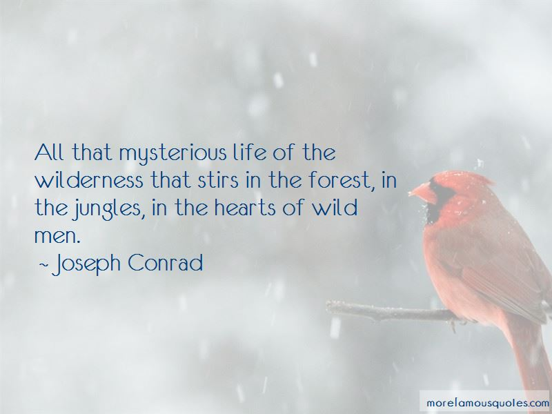 Quotes About Wilderness And Life