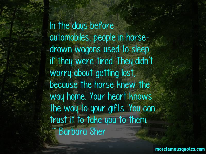Trust Your Horse Quotes Pictures 4