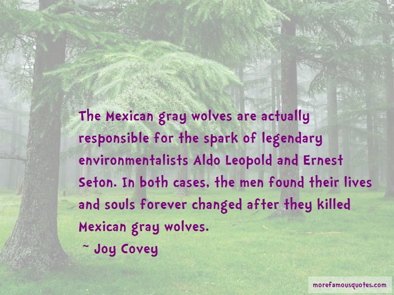 Quotes About Gray Wolves