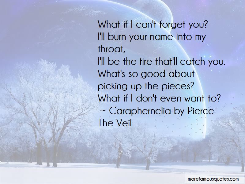 Quotes About I Can't Forget You