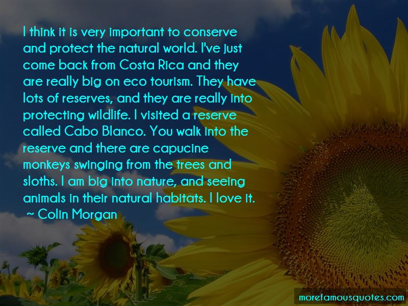Cabo Quotes Pictures 2