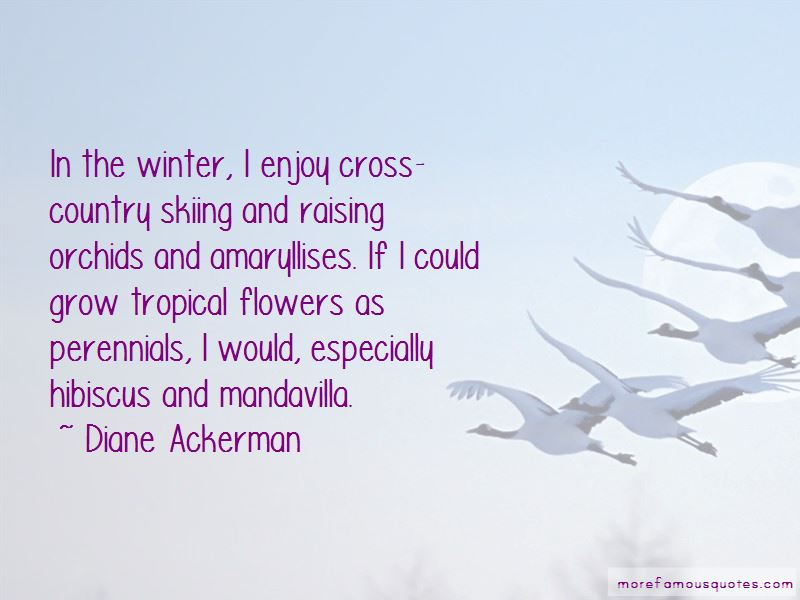 Tropical Flowers Quotes Pictures 3