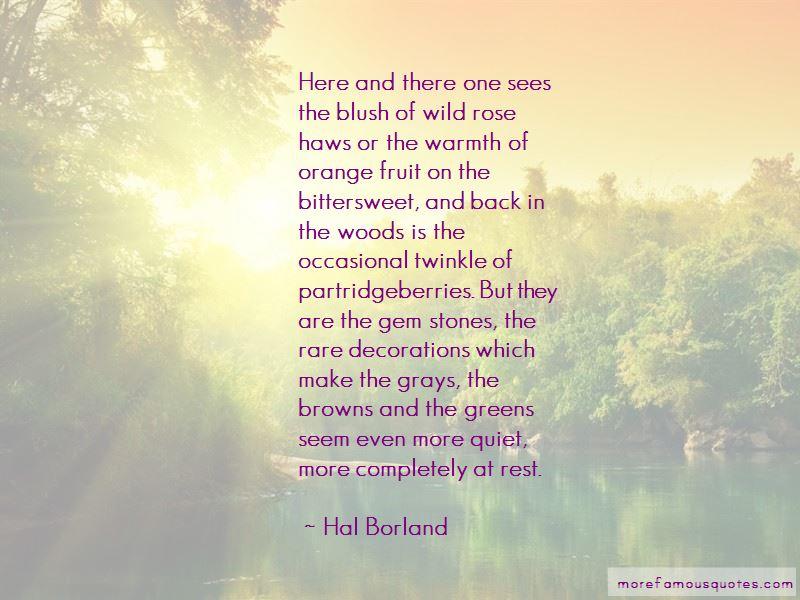 Wild Rose Quotes Pictures 3