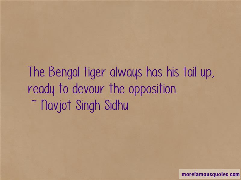 Bengal Tiger Quotes