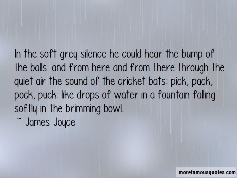Cricket Bats Quotes Pictures 3
