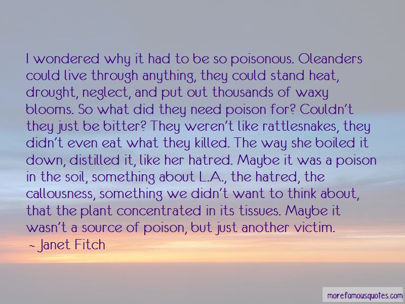 Oleanders Quotes Pictures 2
